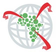 African Data Initiative